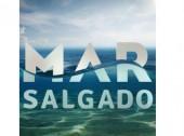 """""""Mar Salgado"""" é a novela com mais exposição de marcas"""
