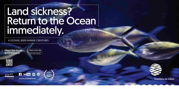 Oceanário comunica para turistas