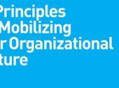 10 dicas sobre Cultura Organizacional