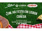 Ainda se fazem piqueniques em Lisboa