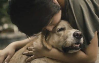 Também se considera mãe do seu cão?