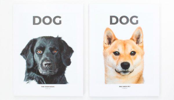 Dog Magazine em Lisboa para apresentar novo número