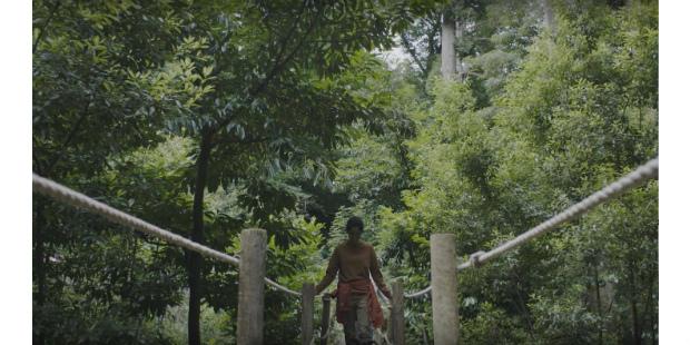 Serra do Bussaco em destaque na campanha da Luso