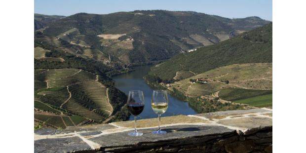 Real Companhia Velha propõe enoturismo no Douro