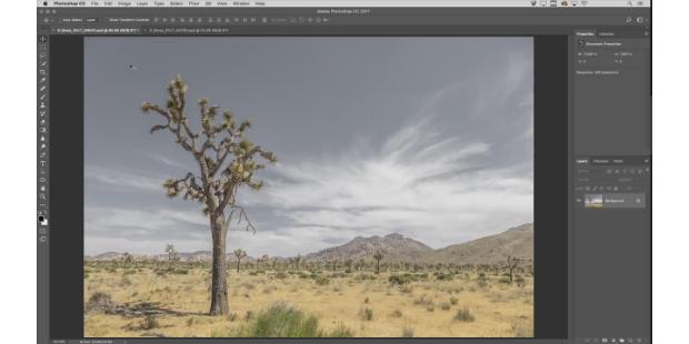 Adobe lança tutorial de Photoshop para iniciantes