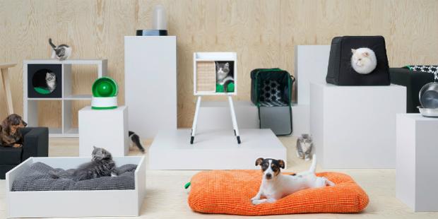 Ikea lança colecção para cães e gatos