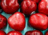 Exportações de fruta para Espanha a caminho dos 500 milhões