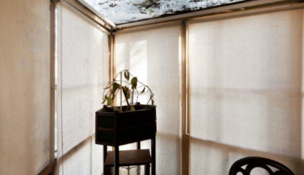 Casa de Beires de Siza Vieira em fotos