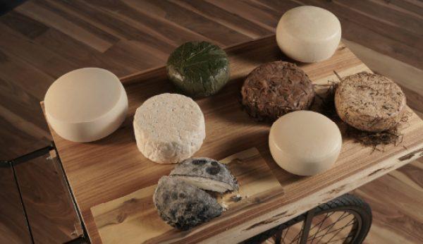Loco estreia-se na produção de queijos