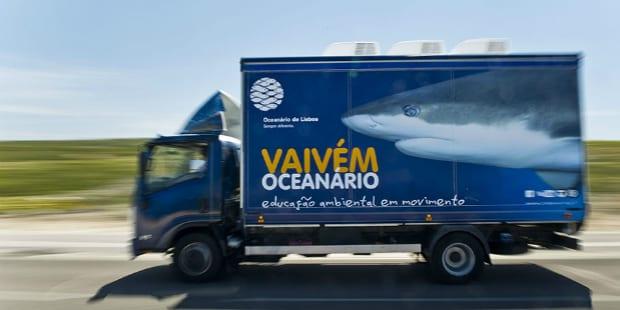 Oceanário tem viagem marcada ao Algarve
