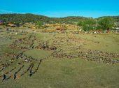 Impacto do Boom Festival ascende aos 35 milhões