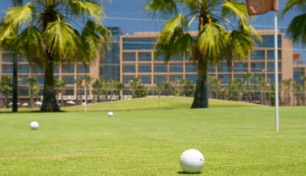 Está a chegar o Torneio de Golfe para Nabos