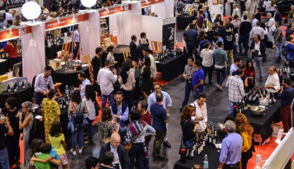 Wine in Azores põe à prova mais de 2 mil vinhos