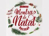 Lisboa procura a melhor montra de Natal